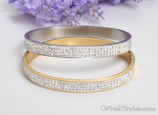 Stainless Steel Crystal Bangle VN439606BA 2