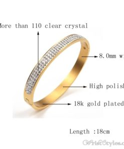 Stainless Steel Crystal Bangle VN439606BA 4