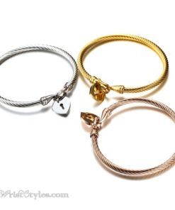 Locked Heart Bangle Set VN579612BS 4